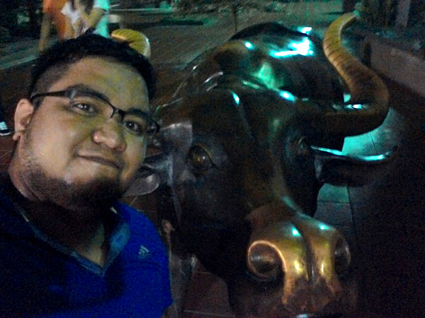 Bull sculpture on Jonker Walk